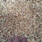 broken walnut kernels wholesale price