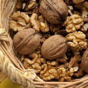 buy bulk walnuts online