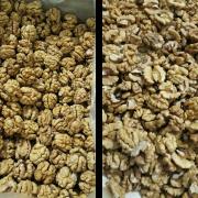 organic walnut kernels wholesale