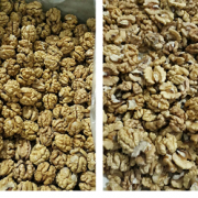 snow white walnut kernels wholesale price