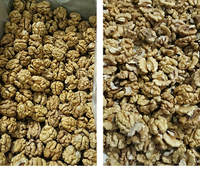snow white walnut kernels wholesale price