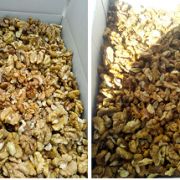 walnut kernels light halves price