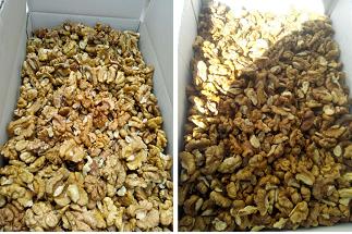 walnut kernels light halves price