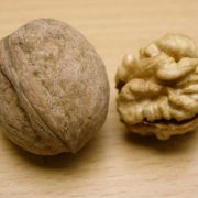 walnut price per kg